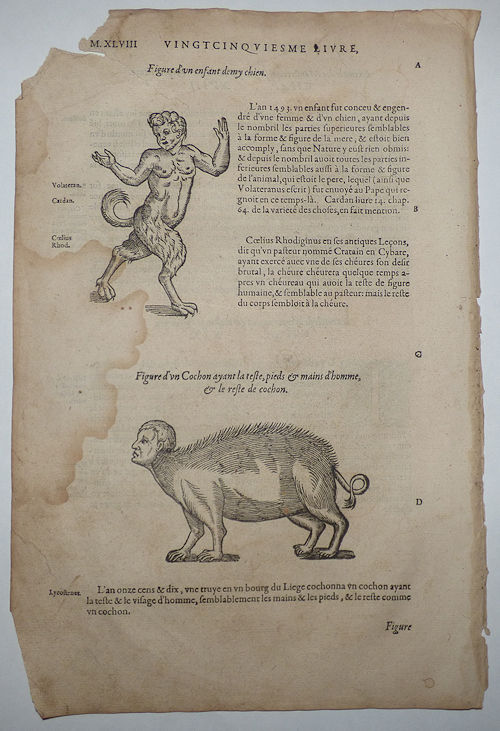 16th-century leaf with two illustrations showing monsters that result from the mixing of species from Ambroise Paré's Monsters. Ambroise Paré.
