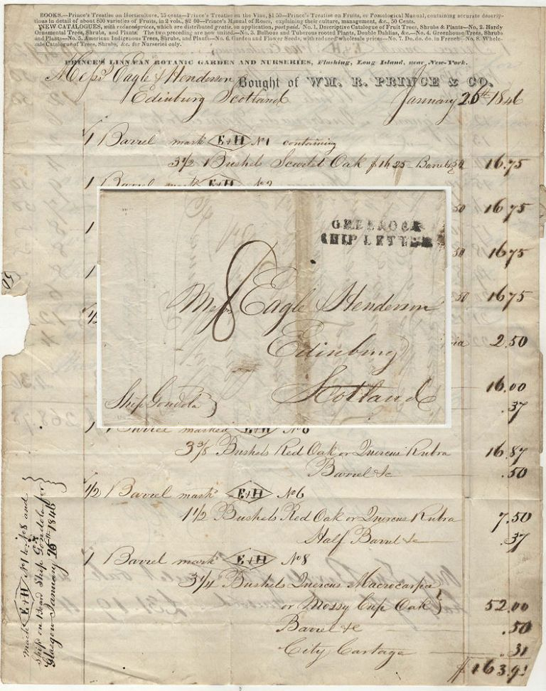 Three-page letter and invoice for trees and bushes from the first  commercial nursery in America sent by packet mail from Flushing, New York  to a ...