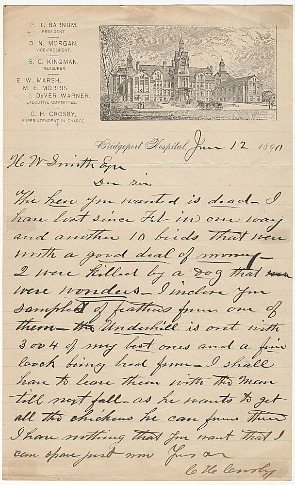 One-page letter on illustrated stationery from a prize-winning poulty breeder who served as the Superintendent of P. T. Barnum's Bridgeport Hospital. C. H. Crosby.