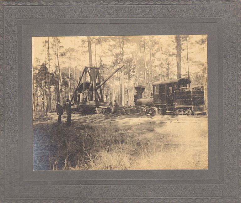 [A NEW YORK COMPANY BEGINS TO STRIP BARE THE VIRGIN LOWLAND FOREST NEAR CHARLESTON DURING THE SOUTH CAROLINA LUMBERING BOOM] 18 photographs detailing the operations of the A. C. Tuxbury Lumber Company; 18 photographs detailing the operations of the A. C. Tuxbury Lumber Company. Unidentified photographer.