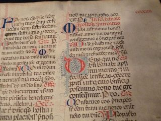 Large Manuscript Leaf on Vellum - Divine Office- Liturgia Honorium
