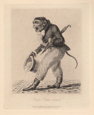 Monkey-Ana or Men in Miniature