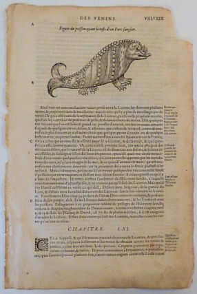 16th century leaf with an illustration of a Sea-Boar from Ambroise Paré's Monsters