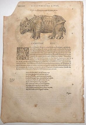 16th century leaf with an illustrations of a Rhinoceros and an Elephant from Ambroise Paré's Monsters