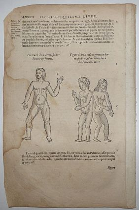 16th-century leaf two illustrations of intersexed people from Ambroise Paré's Monsters....