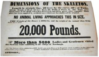 """GREAT AMERICAN MASTODON . . . NO ANIMAL LIVING APPROACHES THIS IN SIZE."" Large broadside advertising the discovery and display of the ""Great American Mastodon"" skeleton that turned the religious and scientific worlds on their heads."